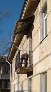 фото отделки балкона